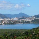 Ferns and Lycophytes of Santa Catarina Island, Brazil
